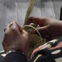 A close up of a someone\'s hands weaving a basket out of sweetgrass.