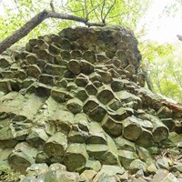 A rock formation with columnar joints rising into the woods.