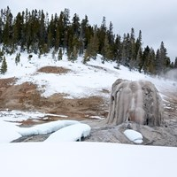 The tan geyserite cone of Lone Star Geyser surrounded by snow.