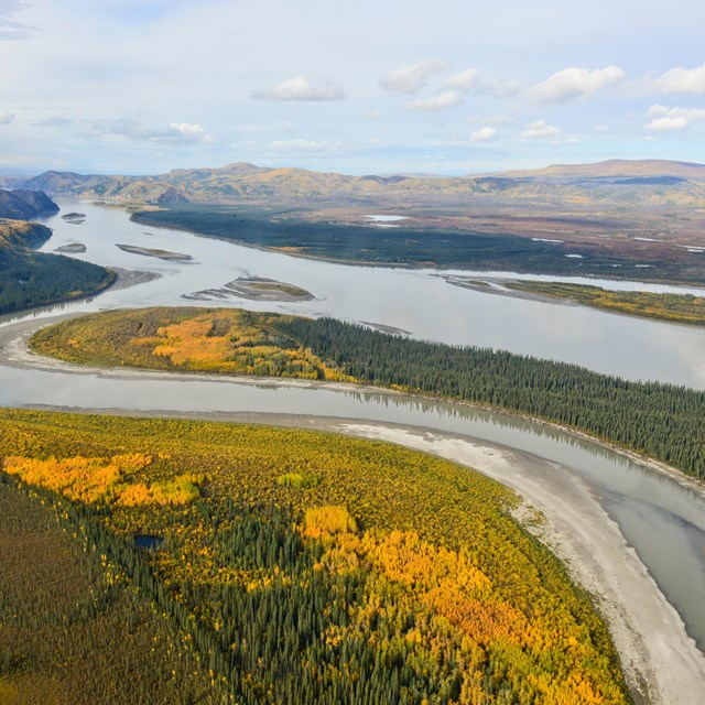 Aerial view of the Yukon River and fall colors