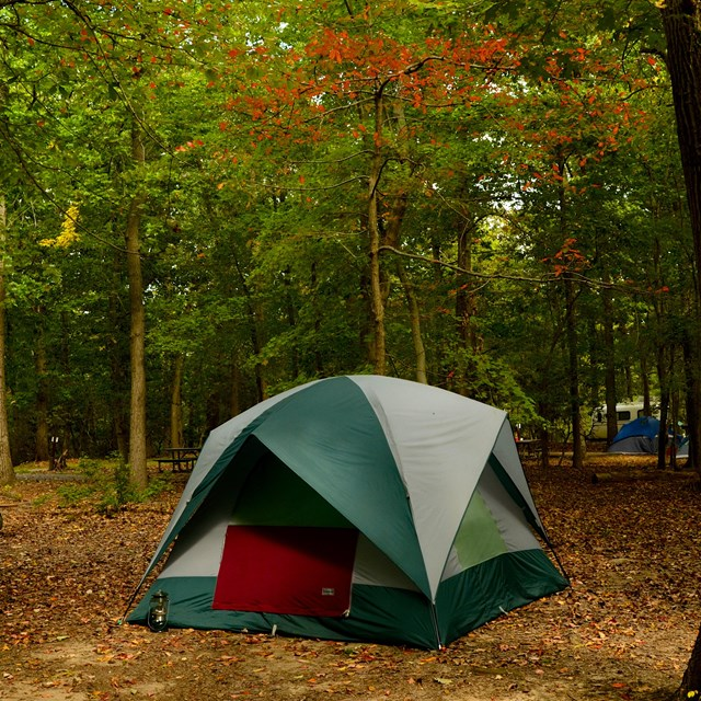 A tent and picnic table in a wooded campground