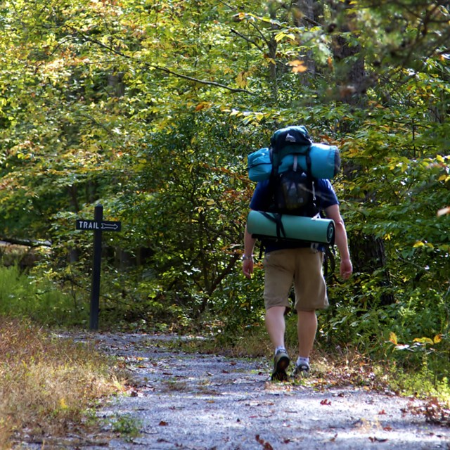 Backpacker walks on trail.