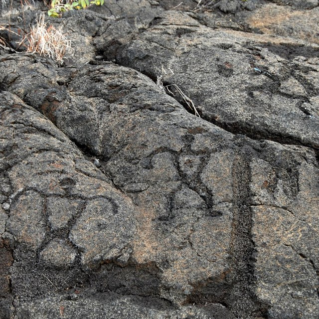 Figures of people etched into rock
