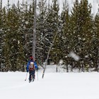 Skier crossing a meadow as snow falls.
