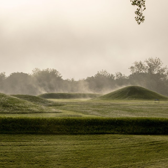 Grass-covered mounds with steam-like fog emanating from them.