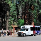 A short white shuttle bus waits in a parking lot in front of sequoia trees. Three people walk to it.