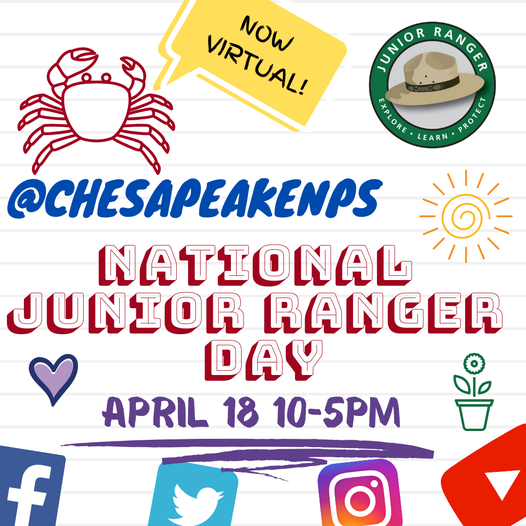 flyer for National Junior Ranger Day, now virtual, features crab, hearts, junior ranger logo