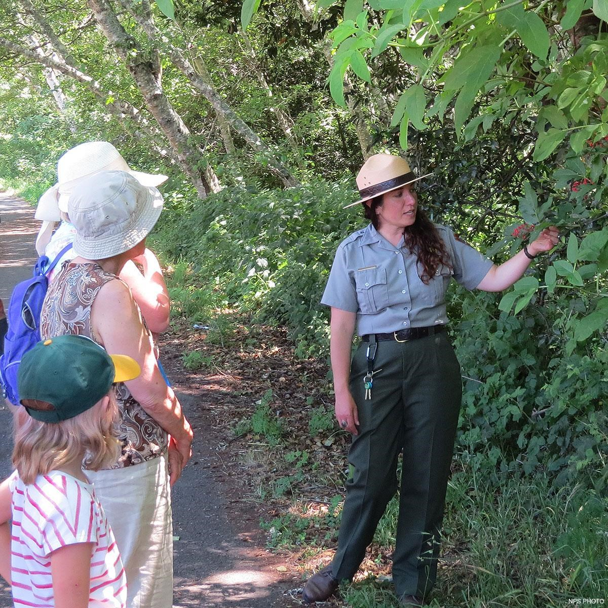 A park ranger point to some red elderberries while talking to visitors.