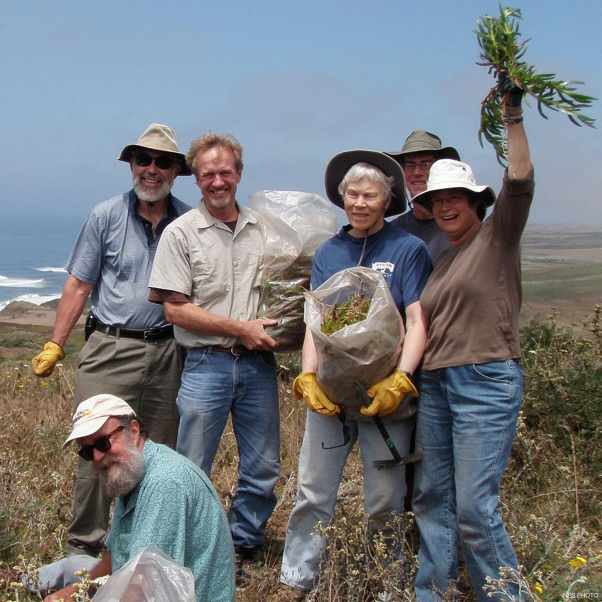 Six volunteers holding bags of invasive iceplant that they have removed.