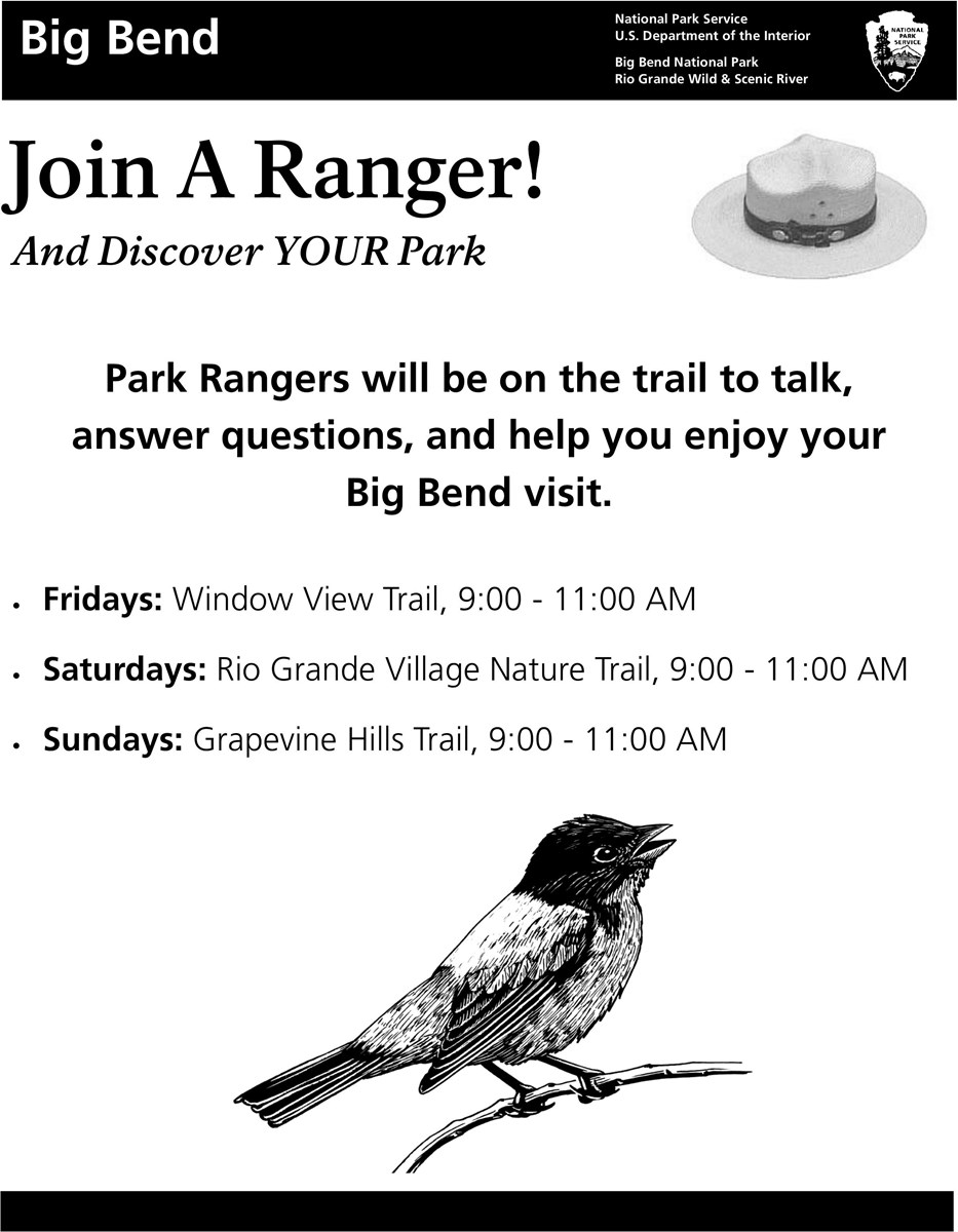 Rangers on the trail advertisement