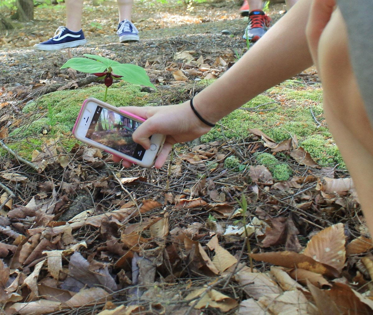 iNaturalist Cell phone app - hand holding cell phone