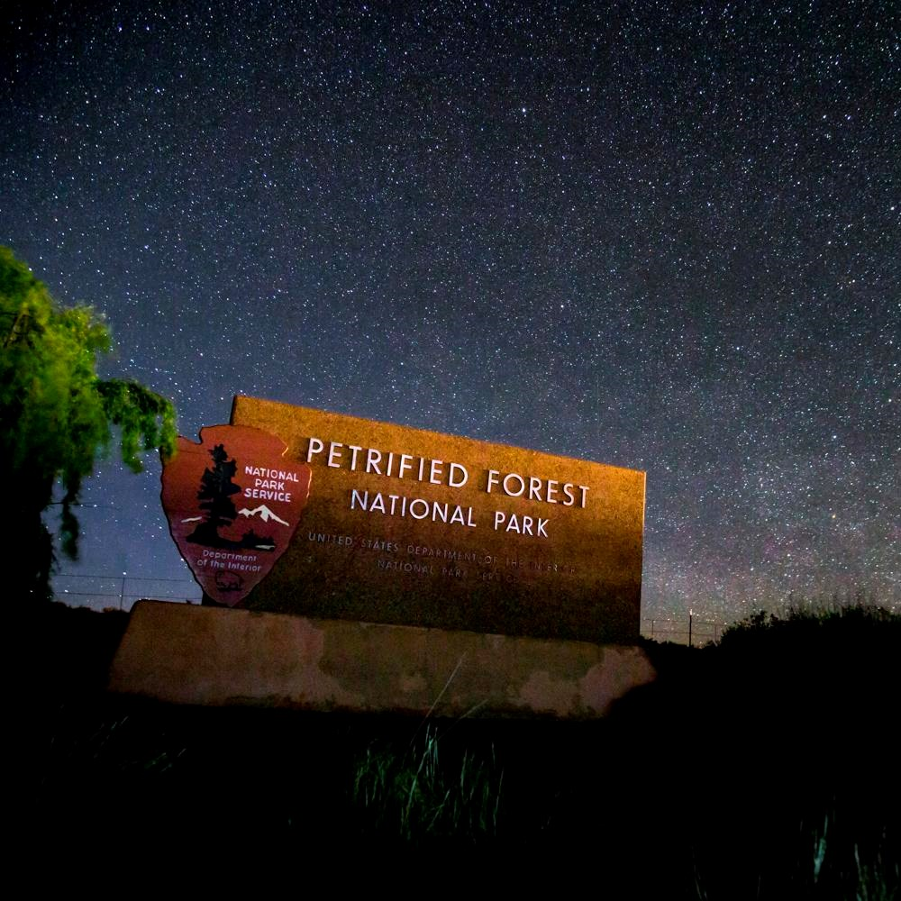 The iconic Petrified Forest entrance sign rests under hundreds of stars dotting a blue night sky.