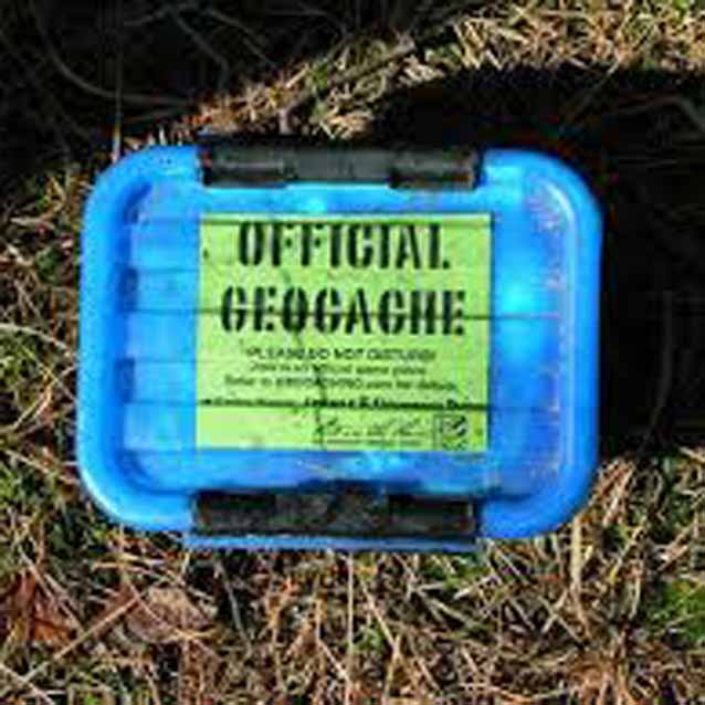 A small blue box in the grass with a sign reading official geocache.