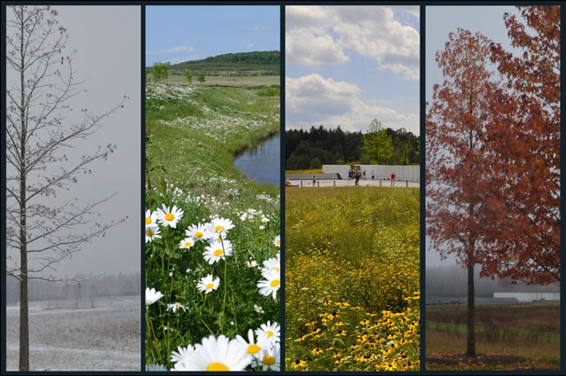 Four images showing winter, spring, fall, and winter