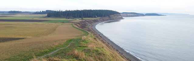 Panoramic view of the Bluff Trail and the beach at Ebey's Landing State Park.