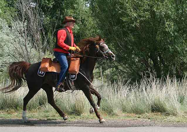 Photo of a man riding a horse along a dirt path in the Great Basin ecosystem