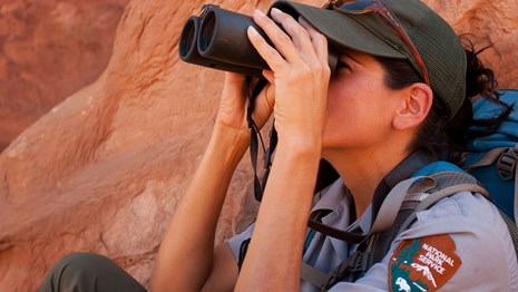 Employee raptor monitoring at Arches NP
