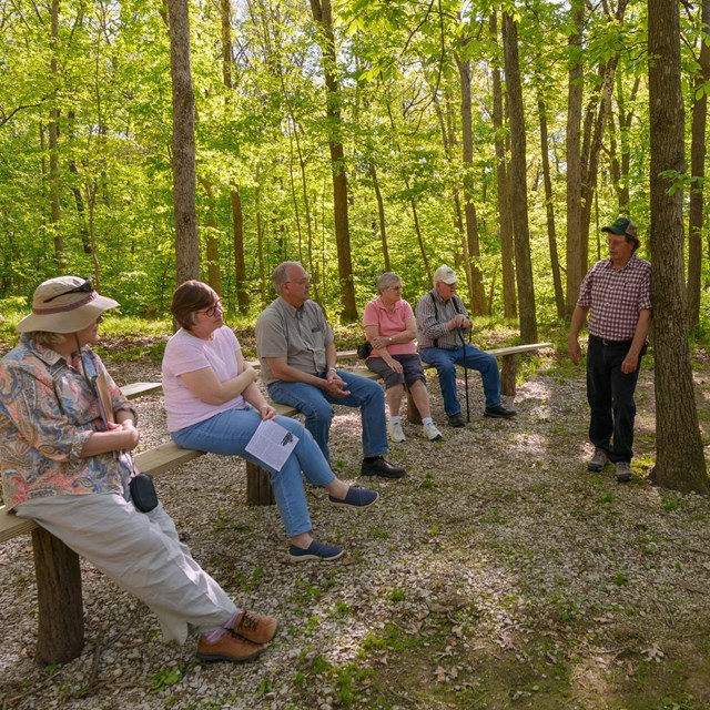 A group of people sitting on wood benches in a forest listening to a person talk