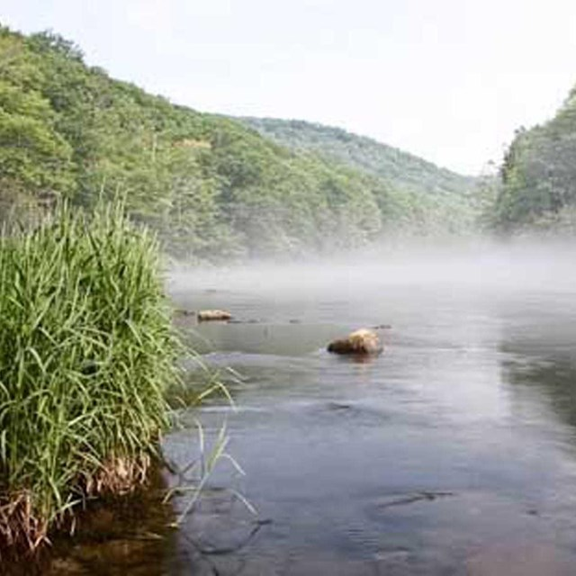 fog over the Farmington River