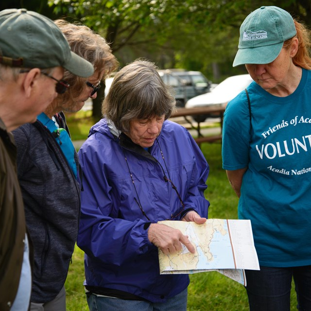 Volunteers huddle together to point to a map and figure out where they are headed in the park.