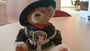 Stuffed bear wearing a ranger uniform, flat hat and volunteer patch.