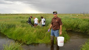 Photo of an NPS employee and students collecting dragonfly larvae for a mercury deposition study.