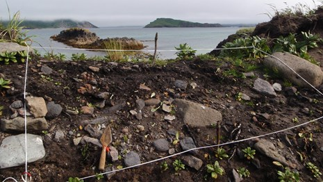 An archaeological excavation unit, a trowel on the ground, and the ocean and islets on the horizon.