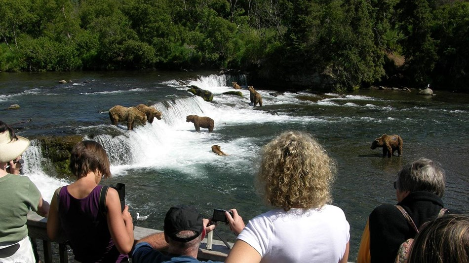 Viewing platform visitors watch bears fishing at Brooks Falls, Katmai National Park & Preserve