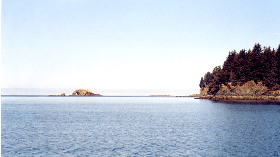 water and two small islands with trees on them