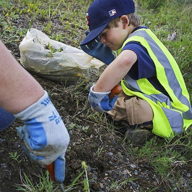 a young boy in a neon vest digs up soil