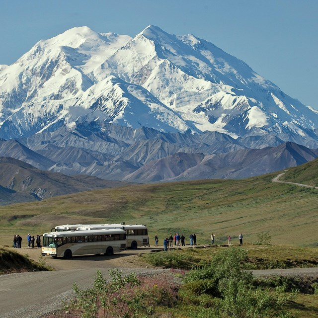 A view Denali with a bus and tourists