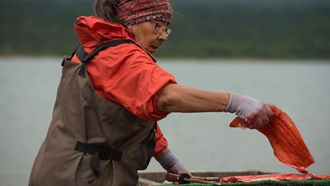A woman prepares salmon for drying