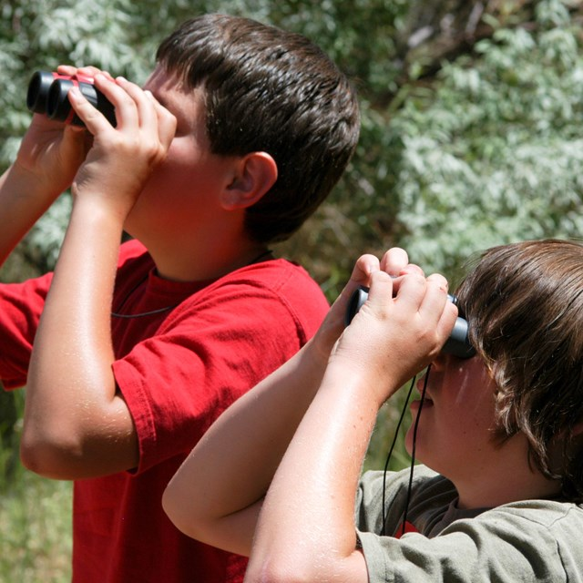 two children look through binoculars