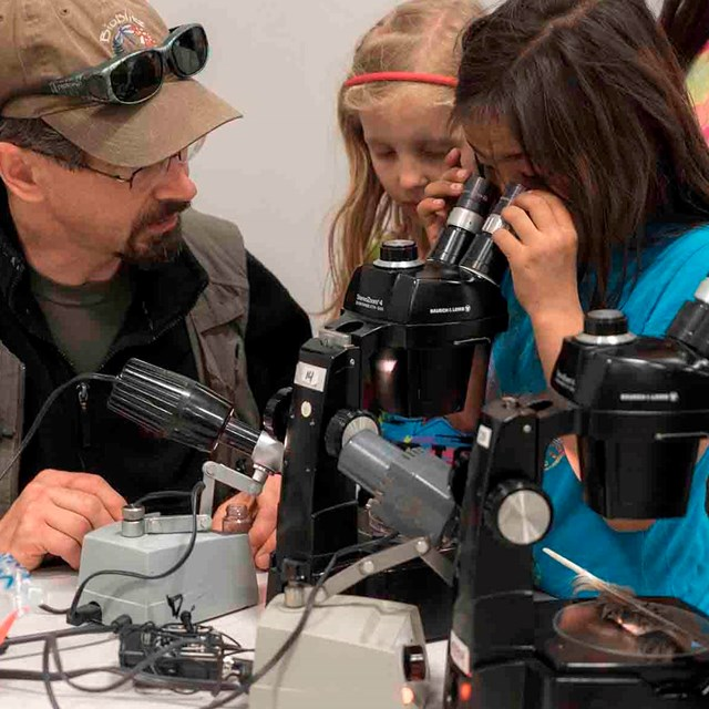 Young girls crowd around a microscope to take a look.