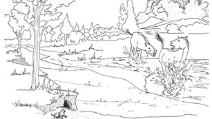 Horse Running Coloring Pages - Coloring Home | 173x307