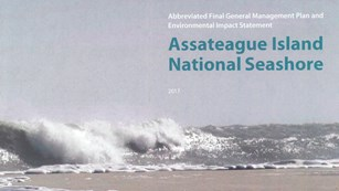 Cover photo of the GMP showing ocean waves crashing on beach. Photo credit:Allen Sklar