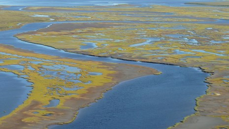 Aerial photos of a marshy coastline.