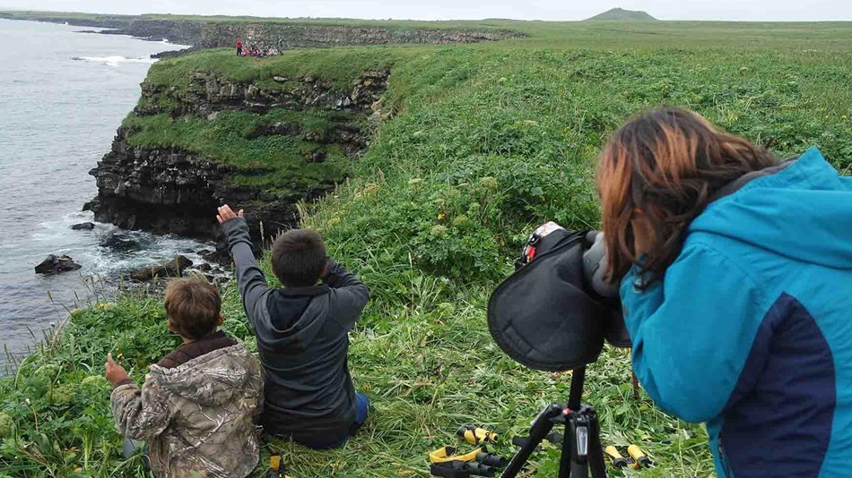 Kids participate in spotting birds along the rocky coast.