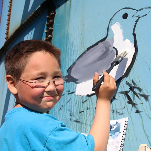 learn about youth seabird network