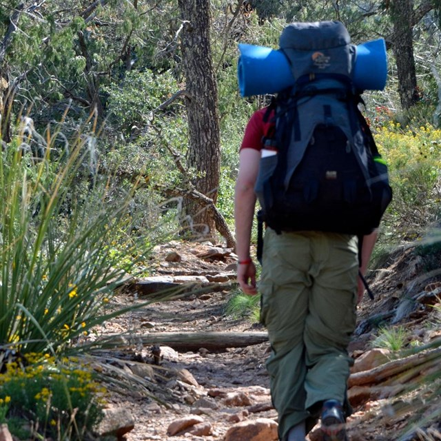 Chisos Backpacking and Camping Guide