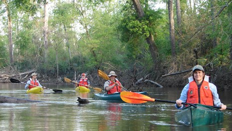 Four people in kayaks on a tree-lined creek.