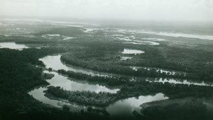 aerial view of rivers, lakes, and dense vegetation