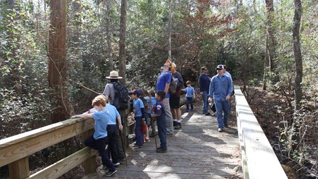 A ranger with a group of adults and children on a boardwalk trail in a forest.