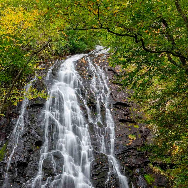 waterfall cascading over black rock face framed by green leafy trees