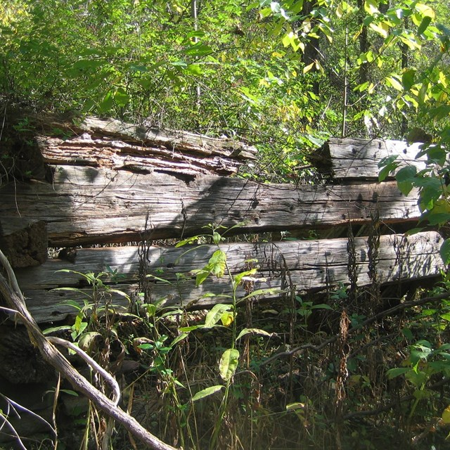 ruins of an old cabin