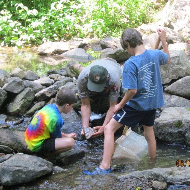 children finding macro invertebrates with a park ranger