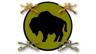 The regimental pins of the four buffalo soldier regiments surrounding a buffalo logo