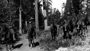 5 soldiers on horseback wearing hats with rifles in front of trees.