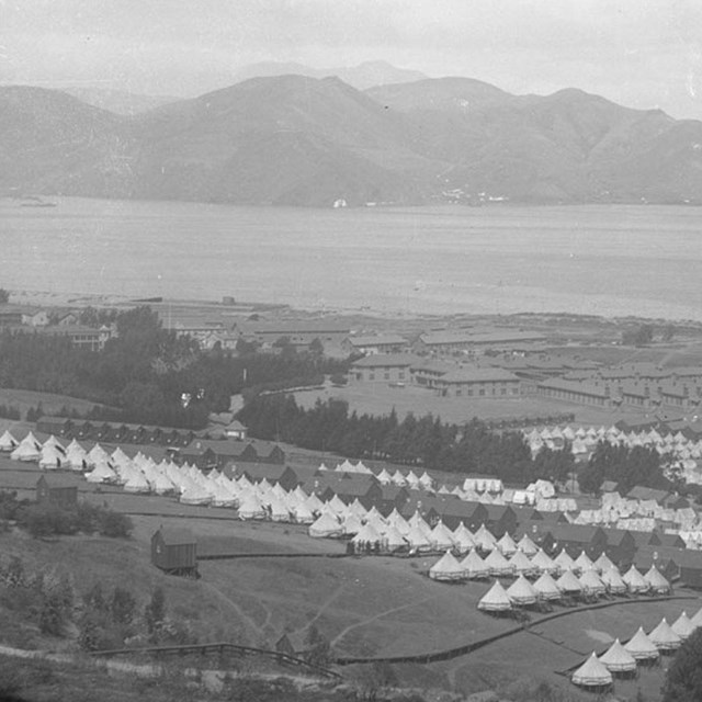 Several white tents placed near the shoreline by a bay