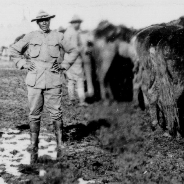 Army soldiers standing in a muddy field next to several horses
